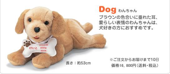Dog わんちゃん